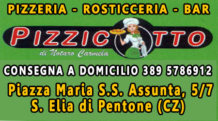 Banner Pizzicotto